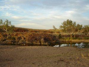 Camel dung camp