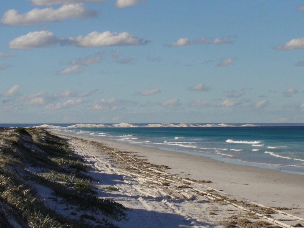 Beach Run with Bilbunya Dunes in the distance