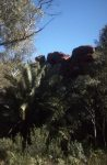 Durba Gorge