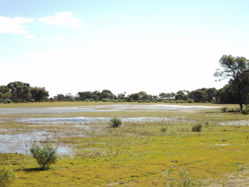 Beresford Lagoon