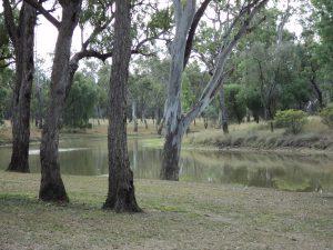 Judds Lagoon