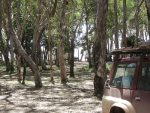 Elim Beach Campground