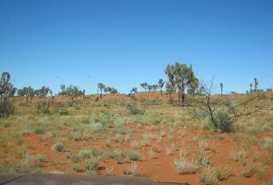 Edge of Great Sandy Desert