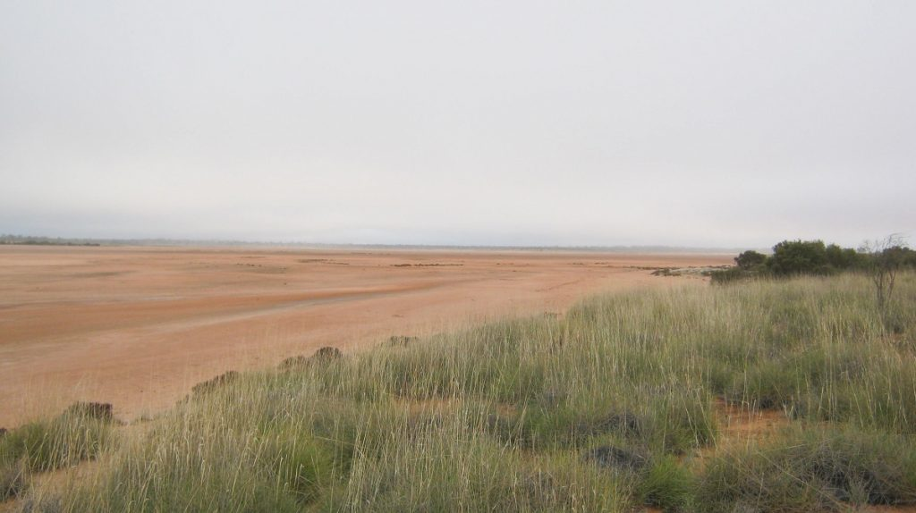 Lake Neale