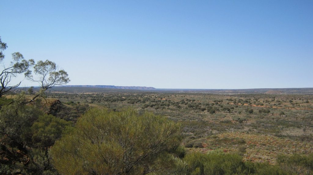 View of Kings Canyon in the distance