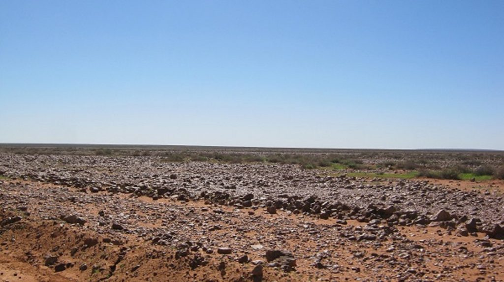 Gibber Plain