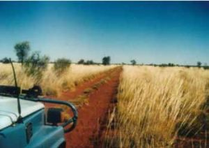 Corrugations near Well 33