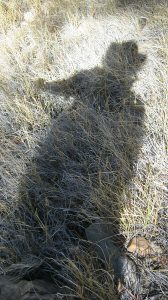 Shadow of an unsteady hiker