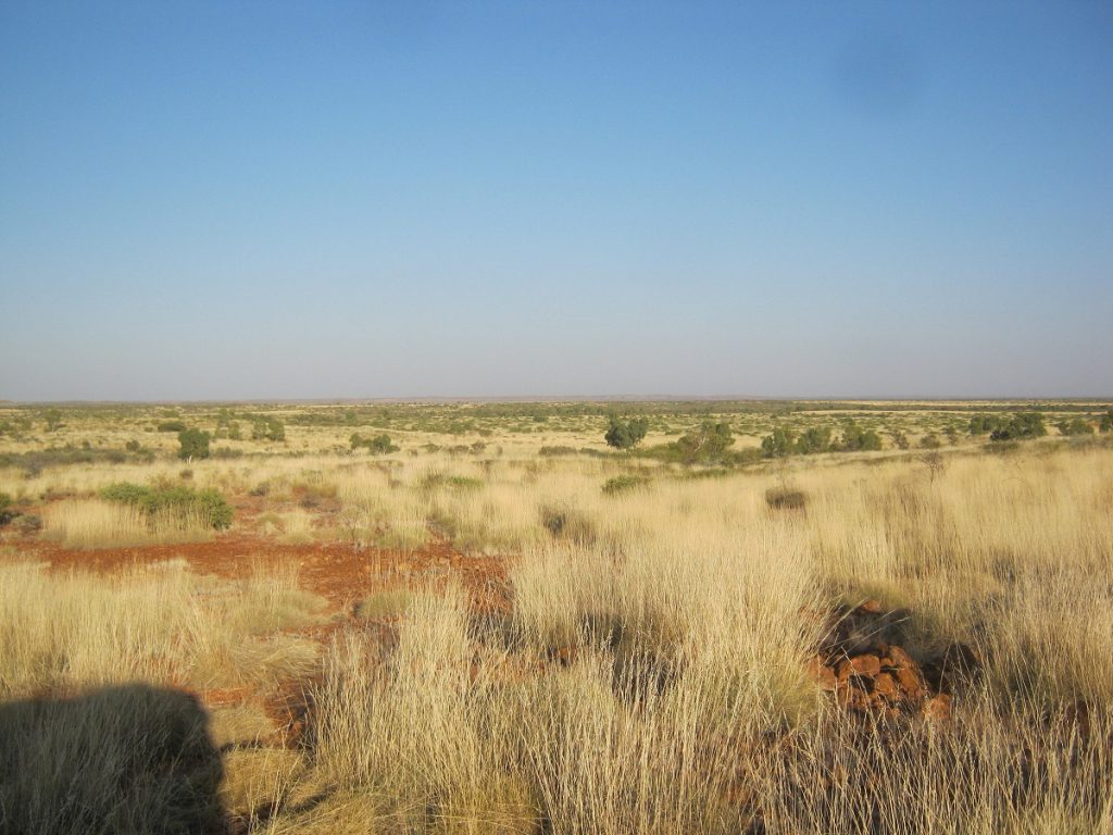 Heading into the Great Sandy Desert