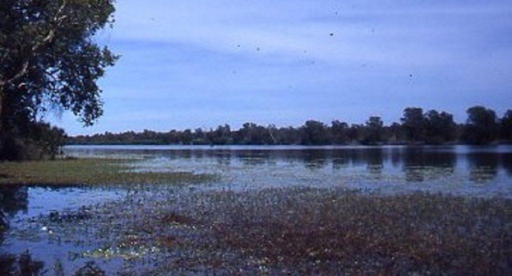 Marrakai Swamp